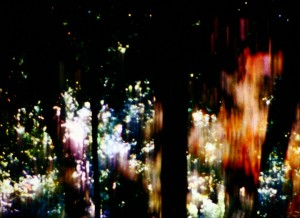 [+]25FPS_Trees of Syntax, Leaves of Axis Daichi Saito